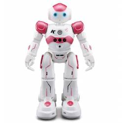 Cady Wini Roboter
